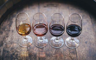 Maridaje y tipos de vino para cada comida