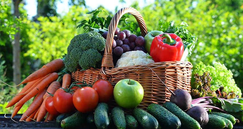 Verdura sana